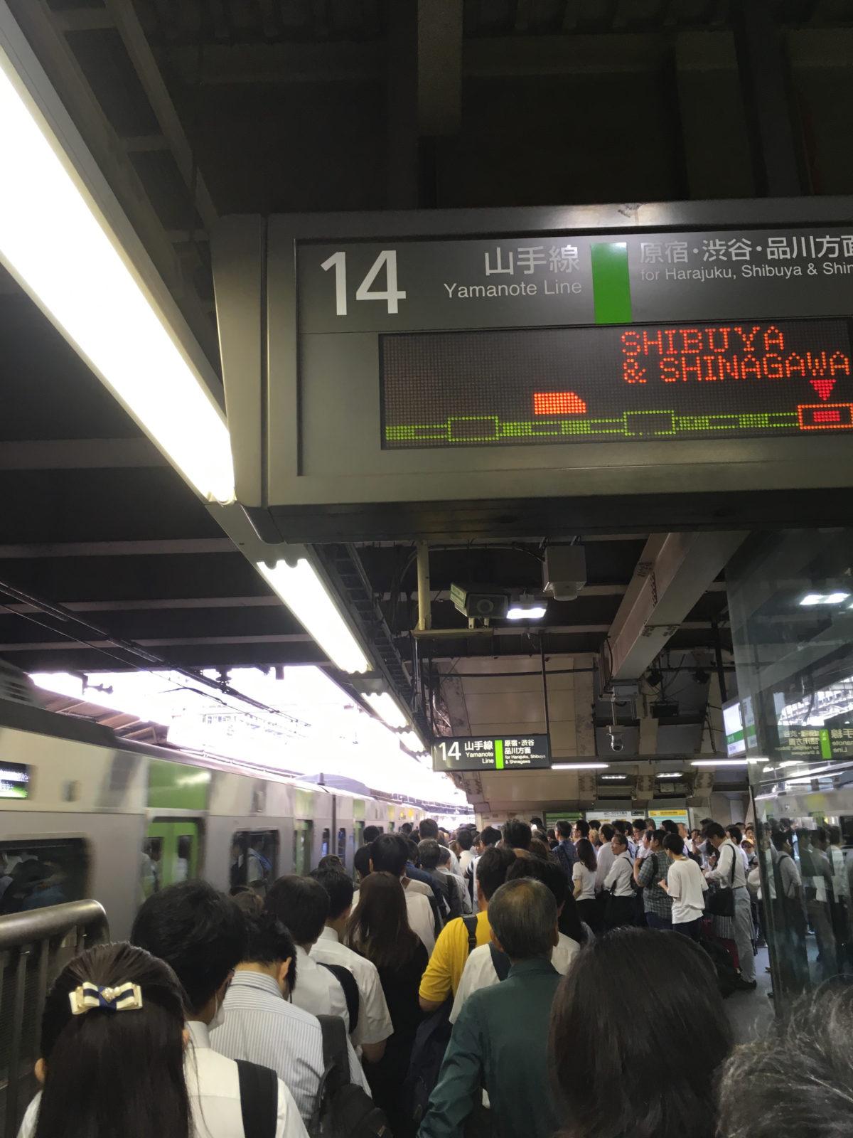 電車路線の混乱時に❗